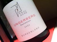 Paul Achs Ungerberg, 2003-100