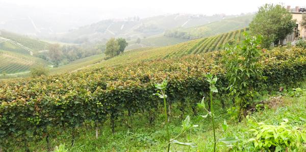 Piemont-Reise 2014 (126 von 121)
