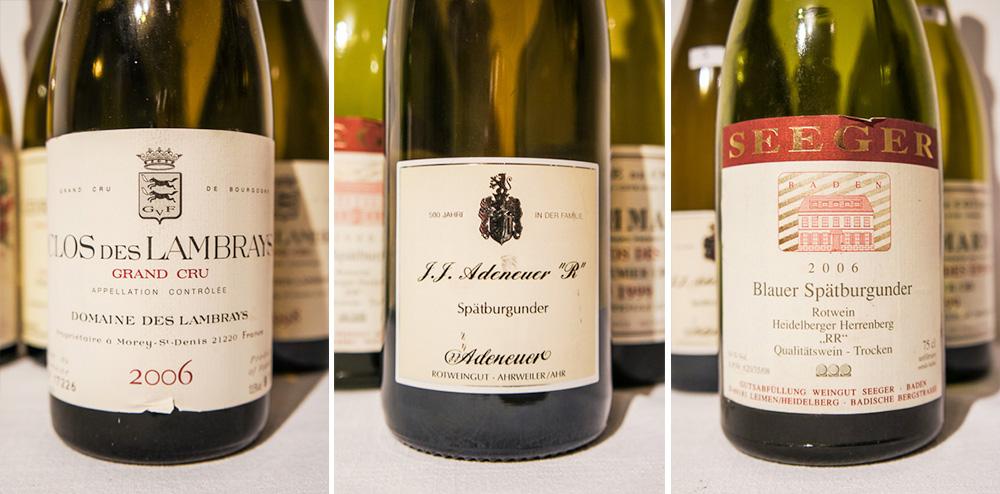 Pinot-Noir-Kraftakt-VII-2